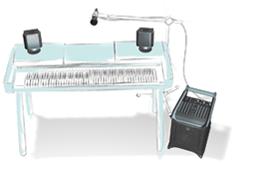 Lucas Nano 300 - keyboard